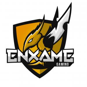 Enxame Gaming