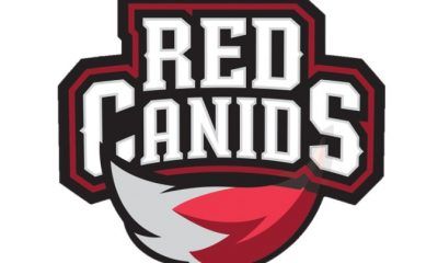red-canids-logo