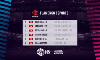 Flamengo no eGOL PRO
